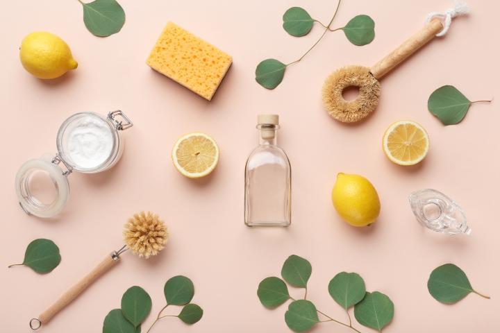 5 Conseils pour un nettoyage de Printempseco-friendly